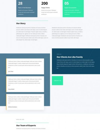 accountant-about-page-533x1994